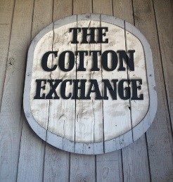 blog-cotton.jpg